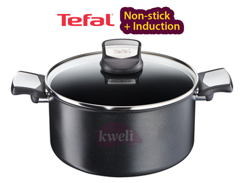 Tefal Extra Durable Non-stick Stewpot 24cm – C6204672 Gas, Electric and Induction Stewpot Pots and Pans Induction